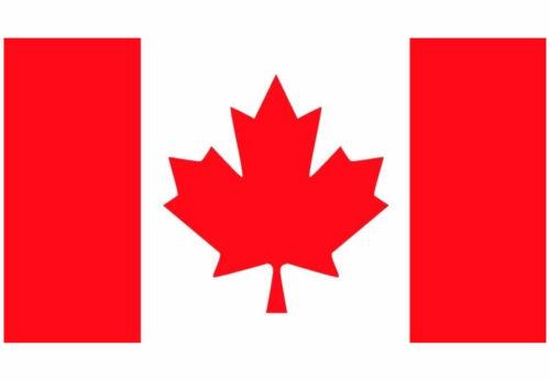 カナダ・トロントでの緊急事態宣言の延長について(新型コロナウイルス関連)